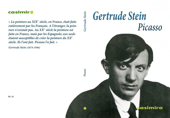 Stein Picasso FR.ai